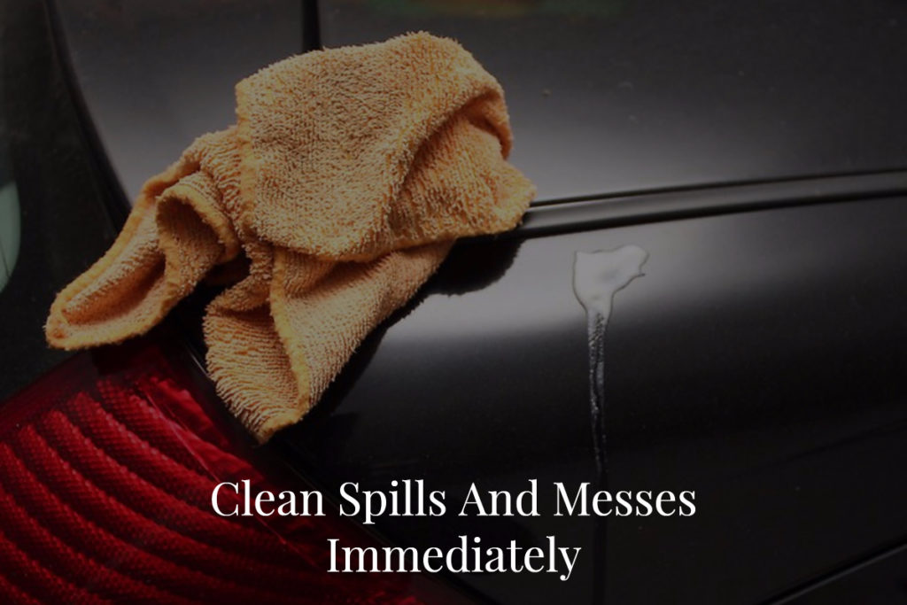 Clean Spills And Messes Immediately