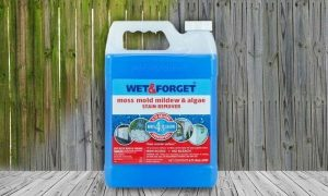wet and forget mold remover
