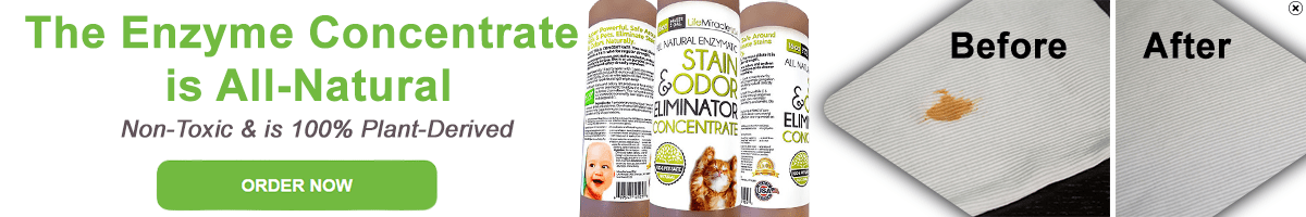 cat urine enzyme cleaner